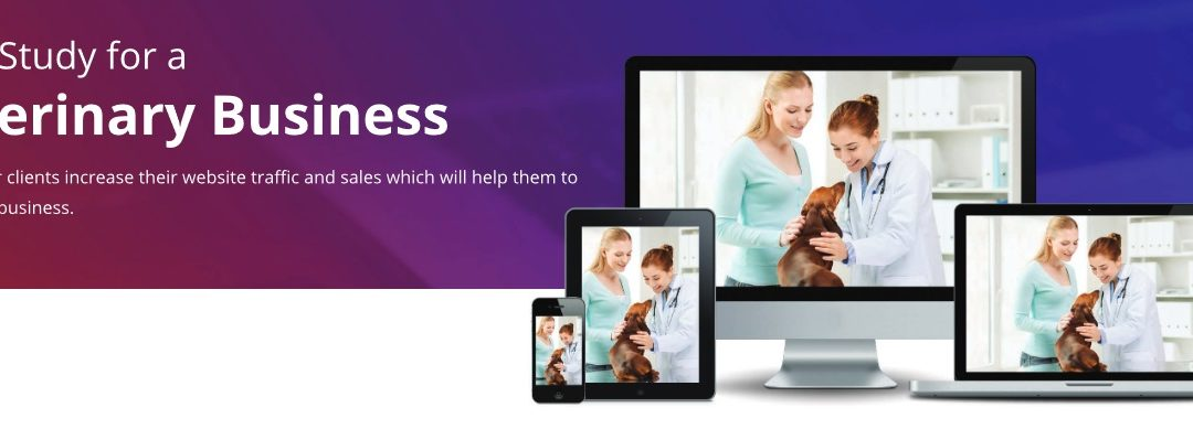 Veterinary Business – Case Study