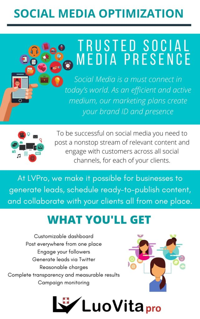 Social Media Optimization - Luovita Professional World Class Marketing Services Plan the perfect digital marketing campaign. Let us help you advertise your business in social media and covert them to make big money online